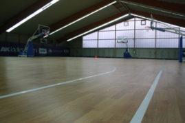 Basketball Boden